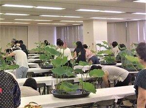 研修士研修会2017いけこみ風景3.jpg